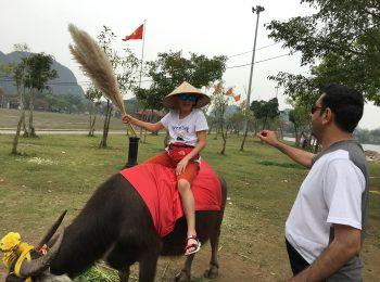 Ninh Binh – Hoa Lu – Tam coc